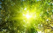 Kaip rūpintis savo grožiu vasarą?