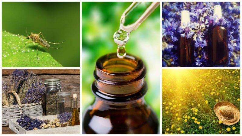 Aromaterapija vasarą